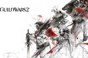 Guild Wars 2 Players Upset Over Steam Delay